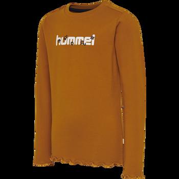 hmlAYAKA T-SHIRT L/S, PUMPKIN SPICE, packshot